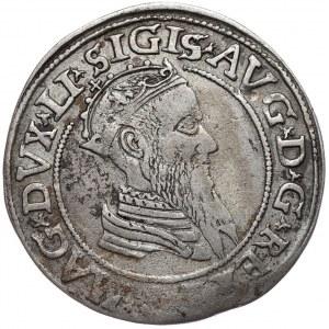 Zygmunt II August, czworak 1568, Wilno, LI/LITVA