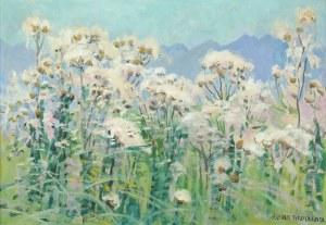 Alfred TERLECKI (1883-1973),