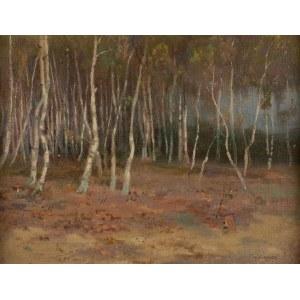 Teodor Ziomek (1874 Skierniewice-1937 Warszawa), Pejzaż z drzewami