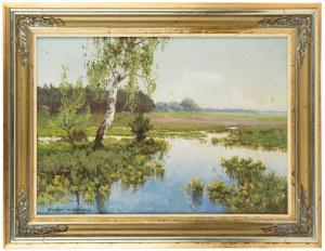 Wiktor Korecki (1890 Kamieniec Podolski - 1980 Milanówek k. Warszawy), Brzozy na rozlewisku