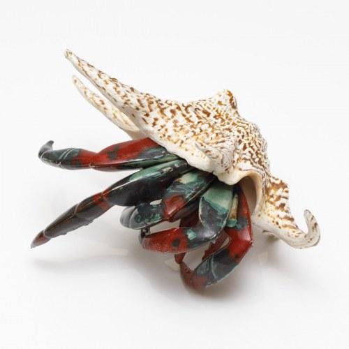 Aneta Śliwa, Krab w muszli, 2020