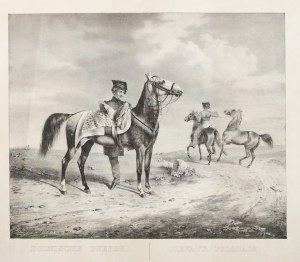 POLSKA. Koń polski; rys. Kuntz (1831), lit. J. Velten, pochodzi z: Abbildungen saemmtlicher Pferde-R ...