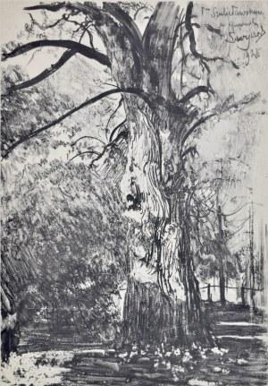Leon Wyczółkowski (1852-1936), Lipa w nadleśnictwie Świt pod Tucholą (I)