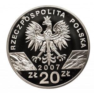Polska, Rzeczpospolita Polska od 1989, 20 złotych 2007 Foka szara