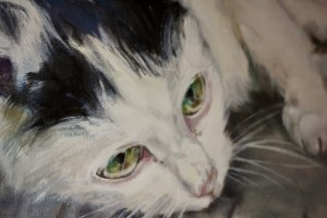 Katarzyna Bukowska, Pet Portrait