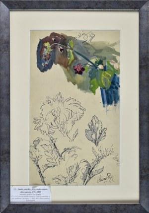Stanisław KAMOCKI (1875-1944), Studia gałązki z polnymi kwiatami, chryzantemy, V, XI 1899