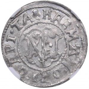 Dorpat ferding 1557 - Hermann II Wesel (1552-1558) NGC MS 61