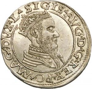 Zygmunt II August, Czworak 1565, Wilno – L/LITV – okazowy