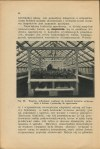 KUPSTO Wacław - Beton w ogrodzie [1933]