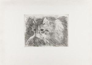 Karpiński Alfons (1875-1961), Kot, lata 20. XX w.