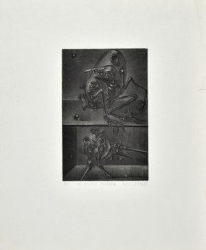 Kacper BOŻEK (ur. 1974), Ornitologia pancerna