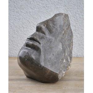 Bogusław Zen (ur. 1963), Profil - artefakt, 2020