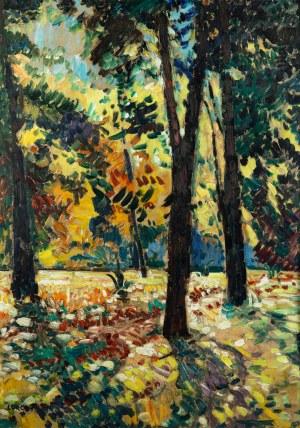 Mieczysław Lurczyński (1907 Petersburg – 1992 Paryż), Las liściasty skapany w słońcu