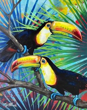 Jose Angell Hill, Tropiki