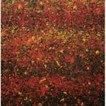 Leon TARASEWICZ (ur. 1957), Bez tytułu, 2020