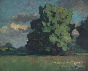 Iwan TRUSZ (1869-1940), Pejzaż z kępą drzew, ok. 1905