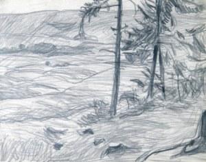 Stanisław KAMOCKI (1875-1944), Pejzaż podgórski z samotnymi świerkami, ok .1908