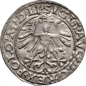 Zygmunt II August, półgrosz 1563, Wilno