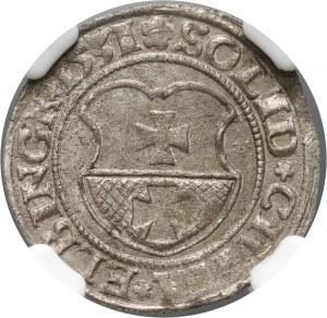 Zygmunt I Stary, szeląg 1531, Elbląg