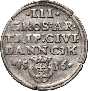 Zygmunt I Stary, trojak 1536, Gdańsk