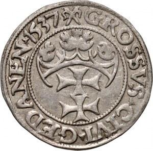 Zygmunt I Stary, grosz 1537, Gdańsk