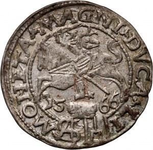 Zygmunt II August, grosz litewski na stopę polską 1566, Wilno