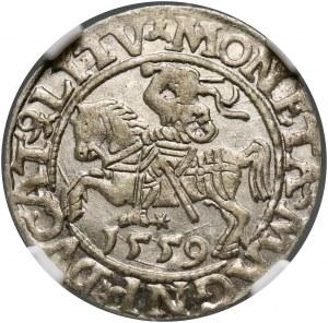 Zygmunt II August, półgrosz 1559, Wilno