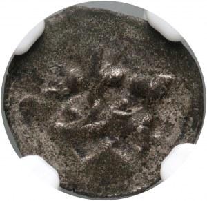 Zygmunt I Stary, denar około 1526 roku, Toruń