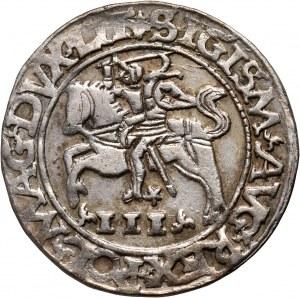 Zygmunt II August, trojak szyderczy 1565, Tykocin