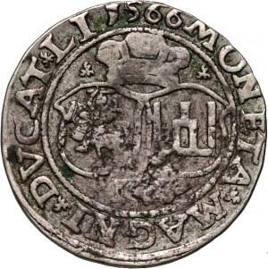 Zygmunt II August, czworak 1566, Wilno