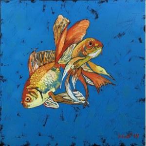 David Schab, Złote rybki, 2019
