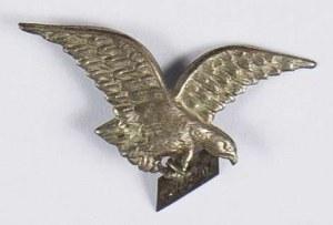 Rosyjski Sokół - oddział krymski (do 1914) Krym