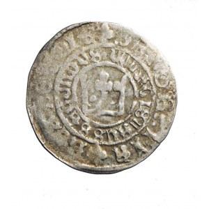 CZECHY WŁADYSŁAW II JAGIELLOŃCZYK (1471-1516)