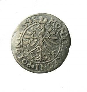 Zygmunt I Stary (1506-1548)