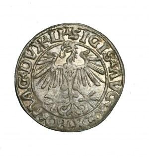 Zygmunt August (1544-1572)jako Wielki Książe Litewski