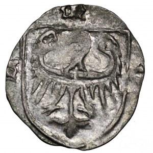 Śląsk, Ks. Oleśnickie, Konrad VI, halerz 1416-1444, Oleśnica - śliczny