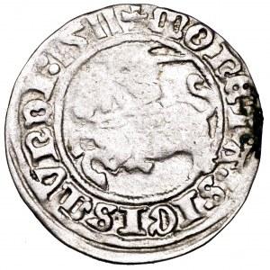 Zygmunt I Stary, półgrosz 1511, Wilno