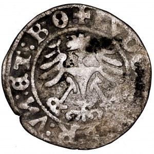 Śląsk, Ludwik, półgrosz 1526, Świdnica