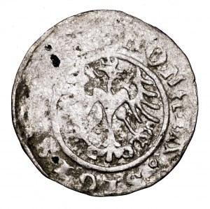 Zygmunt I Stary, półgrosz 1510, Kraków