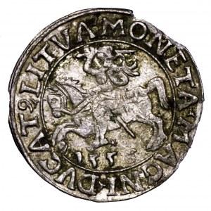 Zygmunt II August, półgrosz 1556, Wilno - L/LITVA