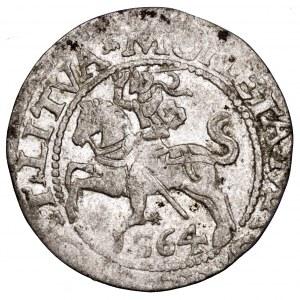 Zygmunt II August, półgrosz 1564, Wilno - LI/LITVA