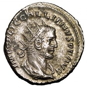 Cesarstwo Rzymskie, Galien, antoninian 253-268