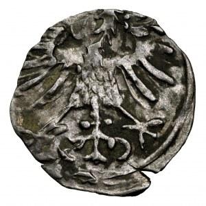 Zygmunt II August, denar 1557, Wilno