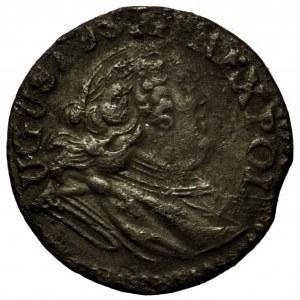 August III Sas, szeląg 1753 - odwrócone T