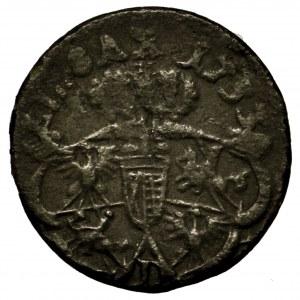 August III Sas, szeląg 1753 L