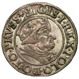 Zygmunt I Stary, Grosz Gdańsk 1538 - PRVSS - b.ładny