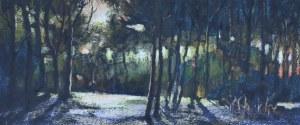 "Hanna Romańska-Tusiewicz, ""Wieczorny las"", 2015"
