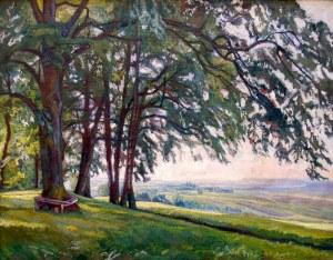 Stanisław KAMOCKI (1875-1944), Letni pejzaż podkrakowski