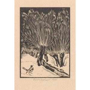 Ostoja-Chrostowski Stanisław (1897 - 1947), Ptak na śniegu (wierzby), 1934
