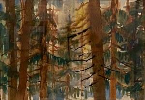 Antoni Suchanek(1901-1982), ''Las o brzasku wschodzącego słońca''
